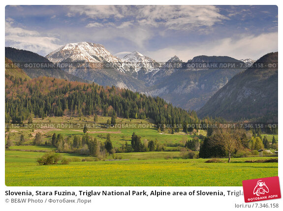 Купить «Slovenia, Stara Fuzina, Triglav National Park, Alpine area of Slovenia, Triglav National Park», фото № 7346158, снято 19 января 2020 г. (c) BE&W Photo / Фотобанк Лори