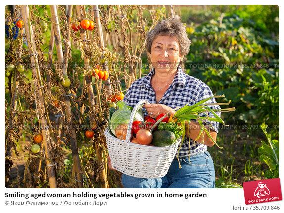 Smiling aged woman holding vegetables grown in home garden. Стоковое фото, фотограф Яков Филимонов / Фотобанк Лори