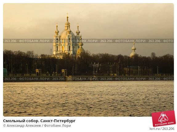 Смольный собор. Санкт-Петербург, эксклюзивное фото № 263206, снято 2 декабря 2006 г. (c) Александр Алексеев / Фотобанк Лори