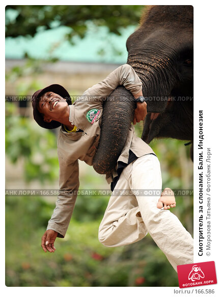 Смотритель за слонами. Бали. Индонезия, фото № 166586, снято 30 октября 2007 г. (c) Морозова Татьяна / Фотобанк Лори