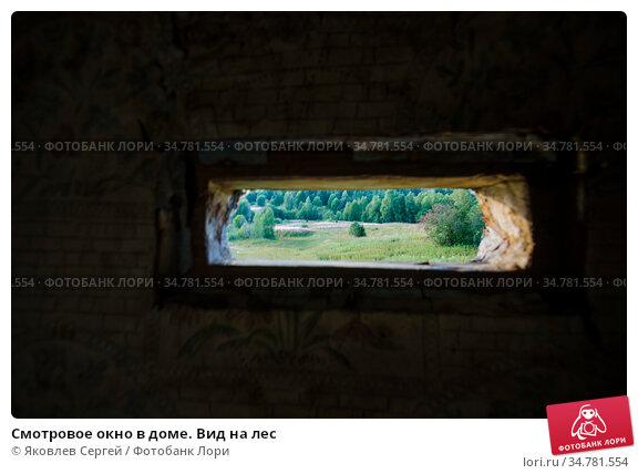 Смотровое окно в доме. Вид на лес. Стоковое фото, фотограф Яковлев Сергей / Фотобанк Лори