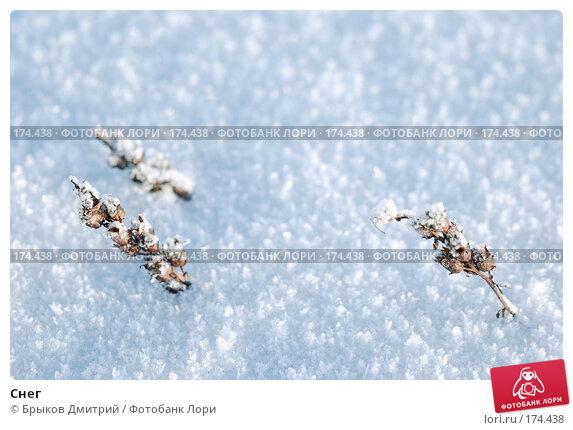 Снег, фото № 174438, снято 7 января 2008 г. (c) Брыков Дмитрий / Фотобанк Лори