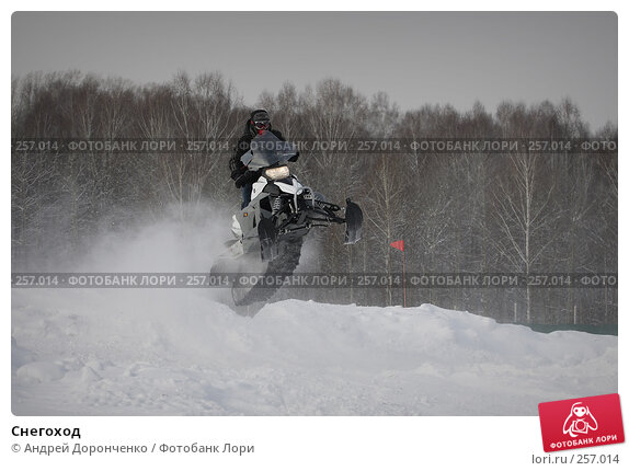 Снегоход, фото № 257014, снято 24 октября 2016 г. (c) Андрей Доронченко / Фотобанк Лори
