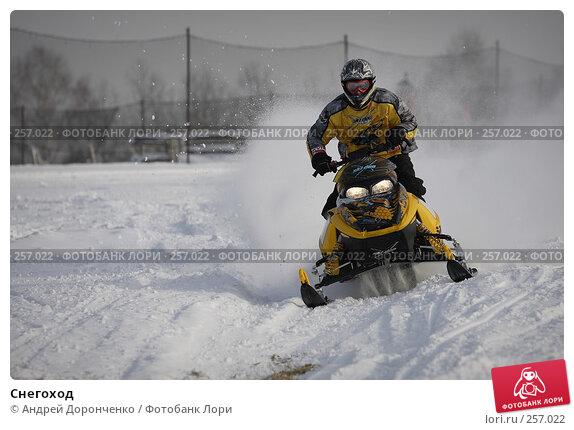 Снегоход, фото № 257022, снято 23 октября 2016 г. (c) Андрей Доронченко / Фотобанк Лори