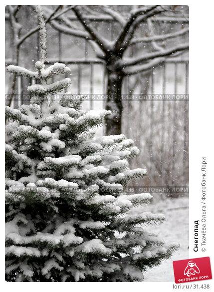 Снегопад, фото № 31438, снято 8 апреля 2007 г. (c) Ткачёва Ольга / Фотобанк Лори