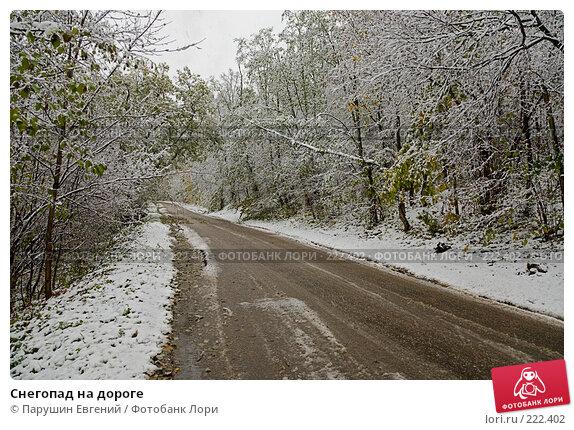 Снегопад на дороге, фото № 222402, снято 23 мая 2017 г. (c) Парушин Евгений / Фотобанк Лори