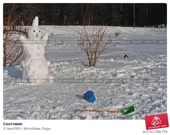 Снеговик, эксклюзивное фото № 206774, снято 3 февраля 2008 г. (c) lana1501 / Фотобанк Лори