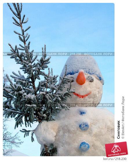 Снеговик, фото № 218230, снято 23 июля 2017 г. (c) ElenArt / Фотобанк Лори