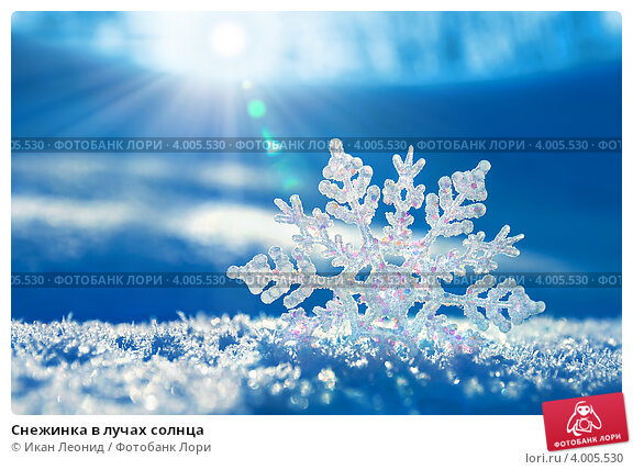 Снежинка в лучах солнца, фото № 4005530, снято 7 ноября 2012 г. (c) Икан Леонид / Фотобанк Лори