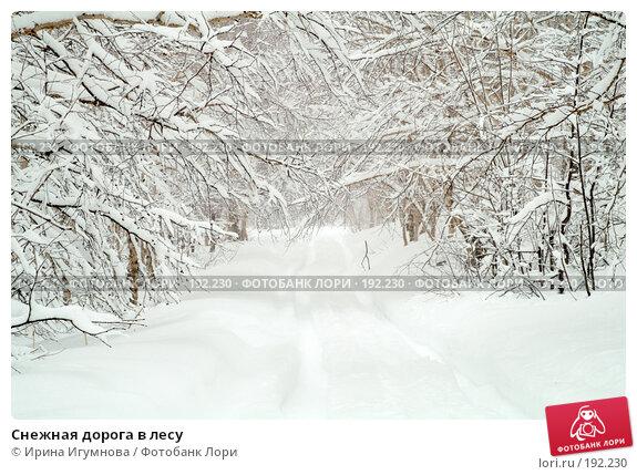 Снежная дорога в лесу, фото № 192230, снято 8 апреля 2007 г. (c) Ирина Игумнова / Фотобанк Лори