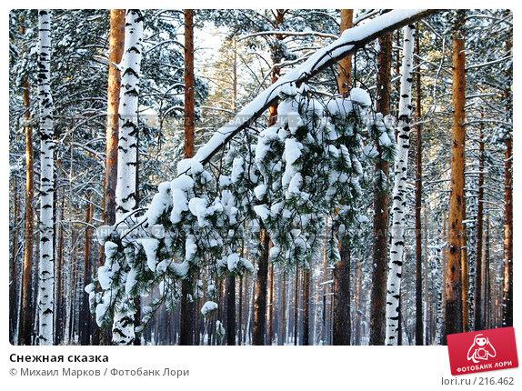 Снежная сказка, фото № 216462, снято 19 января 2008 г. (c) Михаил Марков / Фотобанк Лори
