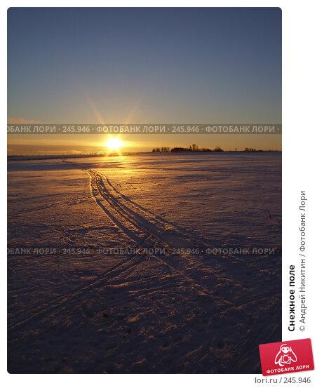Купить «Снежное поле», фото № 245946, снято 2 января 2008 г. (c) Андрей Никитин / Фотобанк Лори