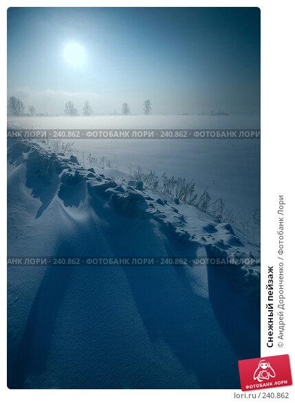 Купить «Снежный пейзаж», фото № 240862, снято 24 апреля 2018 г. (c) Андрей Доронченко / Фотобанк Лори