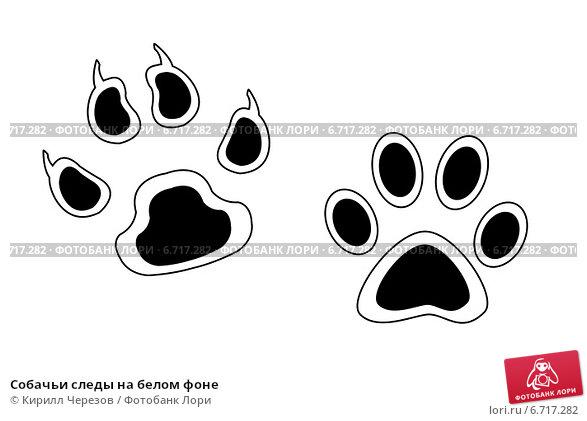 картинки собачьи следы