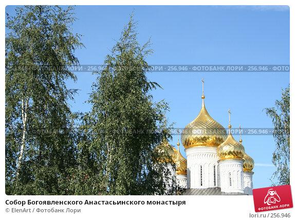 Собор Богоявленского Анастасьинского монастыря, фото № 256946, снято 23 февраля 2017 г. (c) ElenArt / Фотобанк Лори
