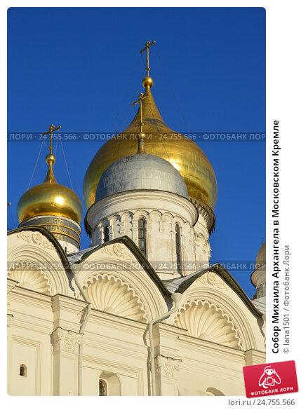 Купить «Собор Михаила Архангела в Московском Кремле», эксклюзивное фото № 24755566, снято 20 декабря 2016 г. (c) lana1501 / Фотобанк Лори