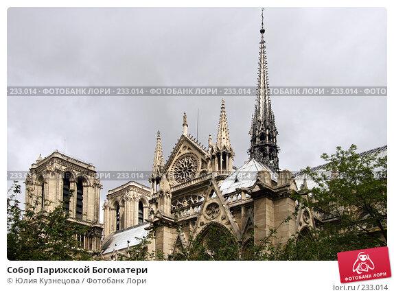 Собор Парижской Богоматери, фото № 233014, снято 7 мая 2007 г. (c) Юлия Кузнецова / Фотобанк Лори