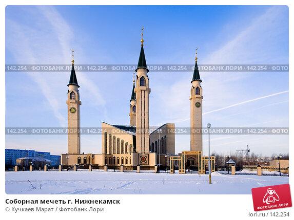 Купить «Соборная мечеть г. Нижнекамск», фото № 142254, снято 8 декабря 2007 г. (c) Кучкаев Марат / Фотобанк Лори