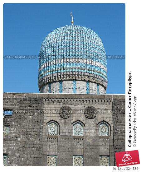 Соборная мечеть. Санкт-Петербург., фото № 324534, снято 12 июня 2008 г. (c) Заноза-Ру / Фотобанк Лори