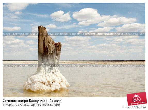 Купить «Соленое озеро Баскунчак, Россия», фото № 2865274, снято 11 июня 2011 г. (c) Курганов Александр / Фотобанк Лори