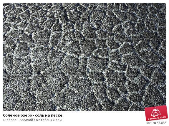 Соленое озеро - соль на песке, фото № 7838, снято 28 июля 2017 г. (c) Коваль Василий / Фотобанк Лори