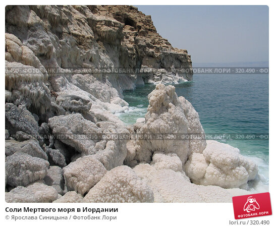 Купить «Соли Мертвого моря в Иордании», фото № 320490, снято 6 июня 2007 г. (c) Ярослава Синицына / Фотобанк Лори