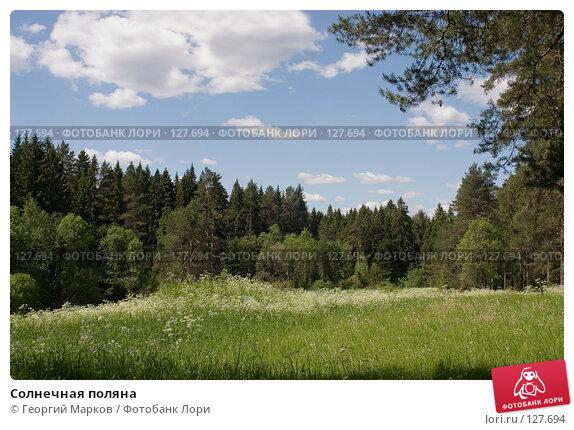 Купить «Солнечная поляна», фото № 127694, снято 18 июня 2006 г. (c) Георгий Марков / Фотобанк Лори