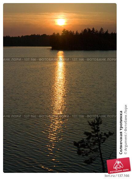 Солнечная тропинка, фото № 137166, снято 21 июня 2006 г. (c) Argument / Фотобанк Лори