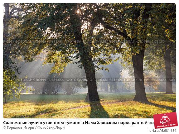 Купить «Солнечные лучи в утреннем тумане в Измайловском парке ранней осенью», фото № 6681654, снято 21 сентября 2014 г. (c) Горшков Игорь / Фотобанк Лори