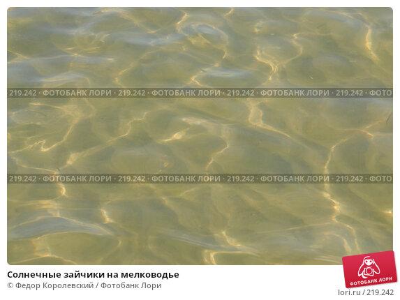 Солнечные зайчики на мелководье, фото № 219242, снято 11 июля 2007 г. (c) Федор Королевский / Фотобанк Лори