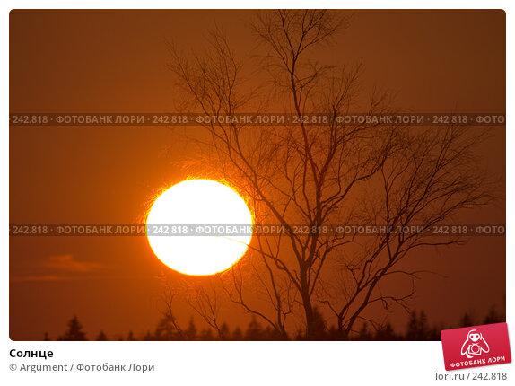 Солнце, фото № 242818, снято 29 марта 2008 г. (c) Argument / Фотобанк Лори
