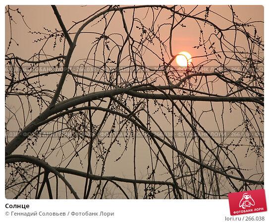 Солнце, фото № 266038, снято 18 апреля 2008 г. (c) Геннадий Соловьев / Фотобанк Лори