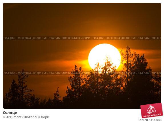 Солнце, фото № 314046, снято 4 июня 2008 г. (c) Argument / Фотобанк Лори