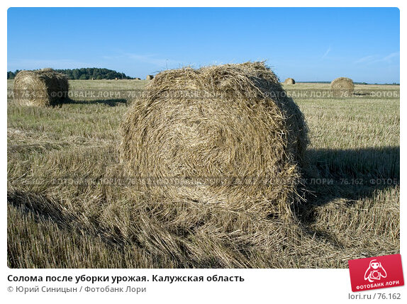 Солома после уборки урожая. Калужская область, фото № 76162, снято 11 августа 2007 г. (c) Юрий Синицын / Фотобанк Лори