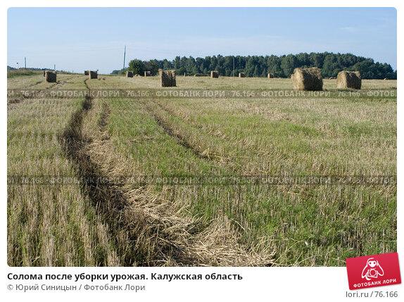 Солома после уборки урожая. Калужская область, фото № 76166, снято 11 августа 2007 г. (c) Юрий Синицын / Фотобанк Лори