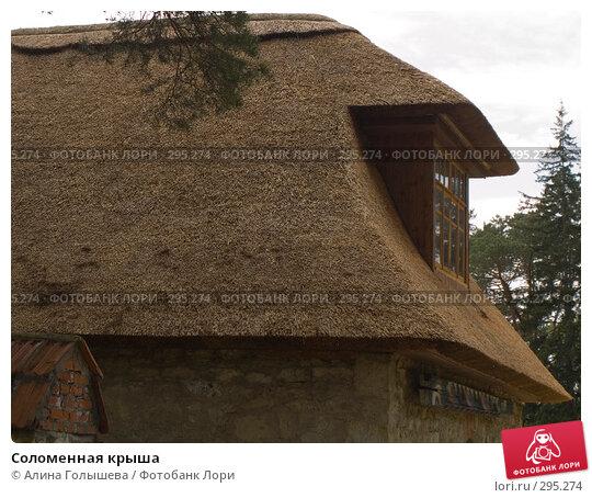Купить «Соломенная крыша», эксклюзивное фото № 295274, снято 18 мая 2008 г. (c) Алина Голышева / Фотобанк Лори
