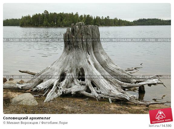 Купить «Соловецкий архипелаг », фото № 14590, снято 17 августа 2007 г. (c) Михаил Ворожцов / Фотобанк Лори