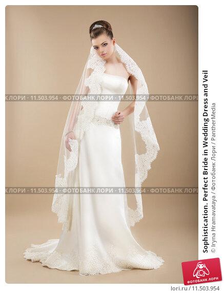 Купить «Sophistication. Perfect Bride in Wedding Dress and Veil», фото № 11503954, снято 21 мая 2018 г. (c) PantherMedia / Фотобанк Лори
