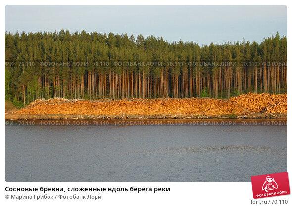 Купить «Сосновые бревна, сложенные вдоль берега реки», фото № 70110, снято 31 мая 2005 г. (c) Марина Грибок / Фотобанк Лори