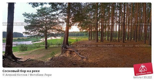 Купить «Сосновый бор на реке», эксклюзивное фото № 33222, снято 21 апреля 2018 г. (c) Алексей Котлов / Фотобанк Лори