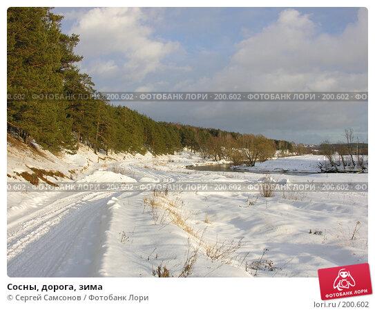 Сосны, дорога, зима, фото № 200602, снято 3 февраля 2008 г. (c) Сергей Самсонов / Фотобанк Лори