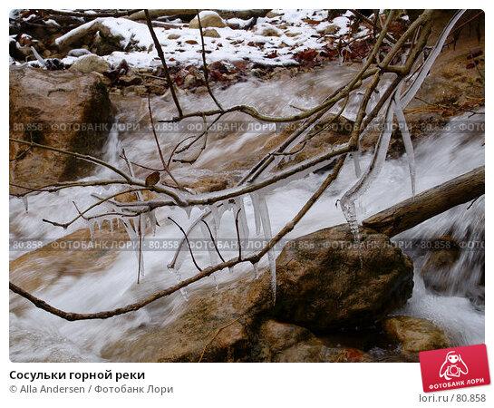 Купить «Сосульки горной реки», фото № 80858, снято 5 ноября 2006 г. (c) Alla Andersen / Фотобанк Лори