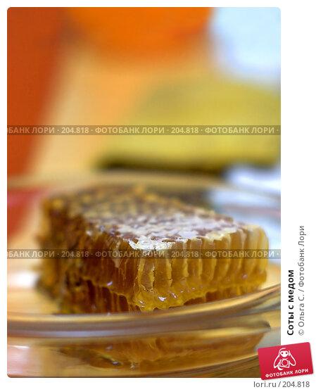 Соты с медом, фото № 204818, снято 27 марта 2017 г. (c) Ольга С. / Фотобанк Лори