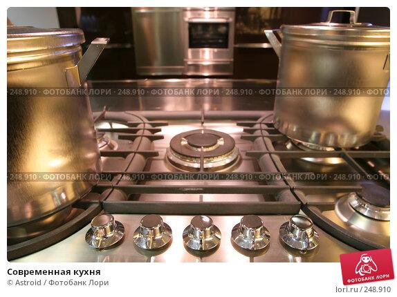 Купить «Современная кухня», фото № 248910, снято 8 апреля 2008 г. (c) Astroid / Фотобанк Лори