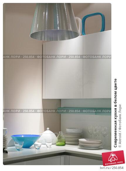 Современная кухня в белом цвете, фото № 250854, снято 8 апреля 2008 г. (c) Astroid / Фотобанк Лори