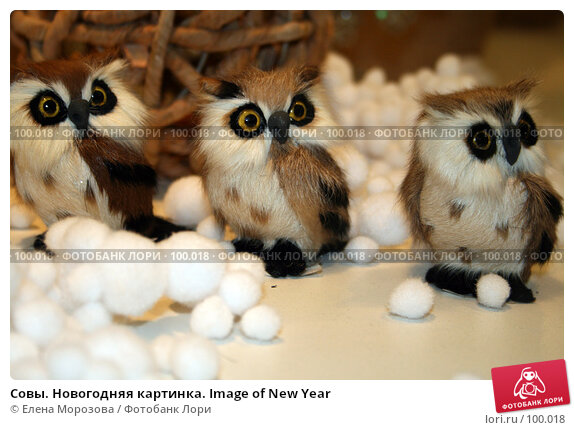 Совы. Новогодняя картинка. Image of New Year, фото № 100018, снято 31 августа 2007 г. (c) Елена Морозова / Фотобанк Лори
