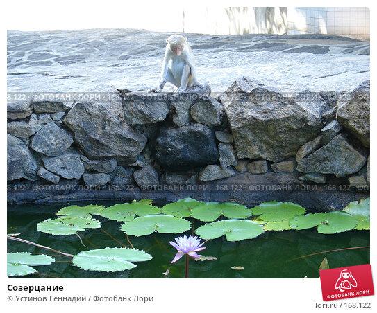 Созерцание, фото № 168122, снято 29 апреля 2005 г. (c) Устинов Геннадий / Фотобанк Лори
