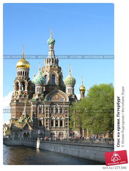 Спас на крови. Петербург, фото № 277590, снято 5 мая 2008 г. (c) Юлия Селезнева / Фотобанк Лори