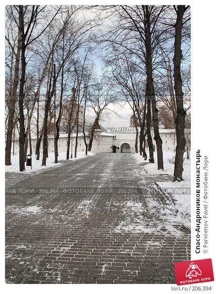 Купить «Спасо-Андроников монастырь», фото № 206394, снято 20 февраля 2008 г. (c) Parmenov Pavel / Фотобанк Лори