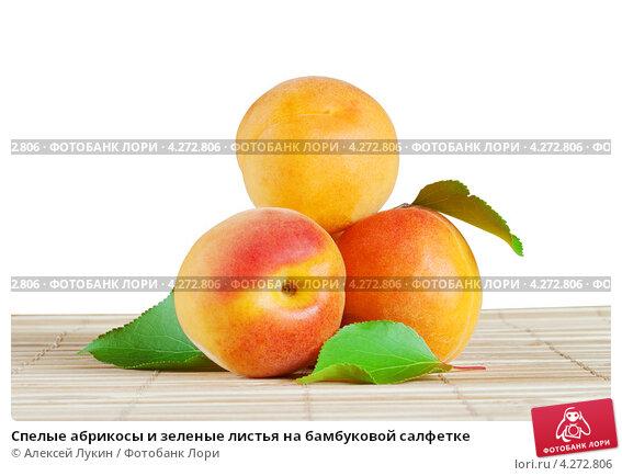 Купить «Спелые абрикосы и зеленые листья на бамбуковой салфетке», фото № 4272806, снято 18 июня 2012 г. (c) Алексей Лукин / Фотобанк Лори